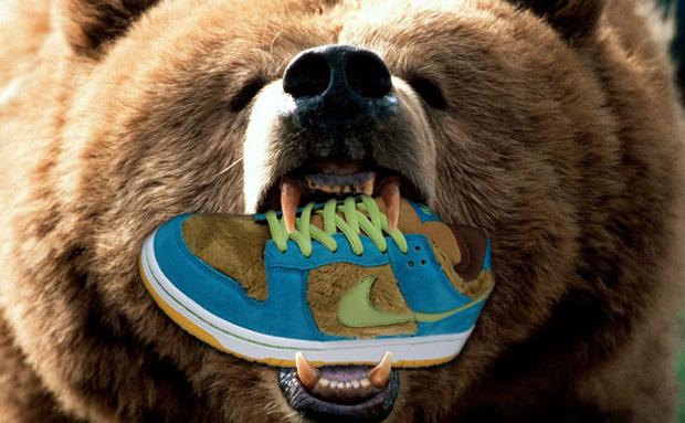 b175ed34ad53 Blue Custom Nike SB Baby Bear 3 Three Bears Dunk Low Pro ...